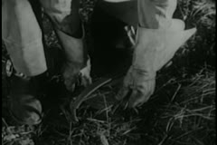 Close-up of hands setting up trap in forest - stock footage