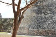 Stock Photo of Ek Balam,Pyramid , Mayan Ruins, Yucatan, Mexico