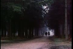 Men on horseback riding through forest Stock Footage