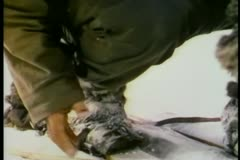 Close-up of hand taking off fur glove to reveal frostbite - stock footage