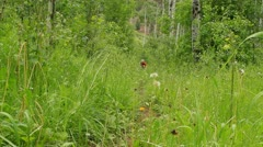 Hitting the Trail Stock Footage