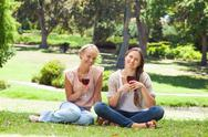 Stock Photo of Friends with wine glasses in the park