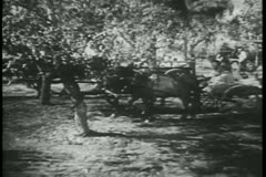 Villagers in horse carts and on foot traveling through forest Stock Footage