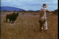 Hunter shooting rhino in Africa Stock Footage