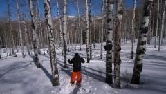 Aspen Forest Snowshoe 2 Stock Footage
