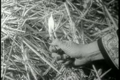 Close-up of hand setting hay on fire with lighter Stock Footage