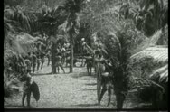 Natives on island rejoicing Stock Footage