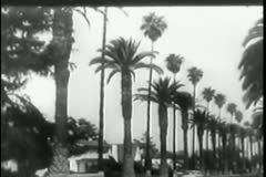 1950s cars moving along tree-lined road and highway - stock footage