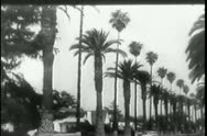 1950s cars moving along tree-lined road and highway Stock Footage