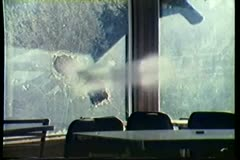 Stock Video Footage of Bullets shattering window