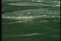 Close-up of oar slicing through water Stock Footage