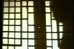 Shadows of two people talking behind shoji screen Stock Footage