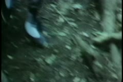 Medium shot of group of people running in forest Stock Footage