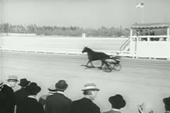 Spectators watching warm-up before harness race Stock Footage