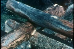 Close-up of hands with axe marking logs for construction Stock Footage