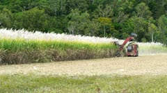 Sugar cane harvester and truck Stock Footage
