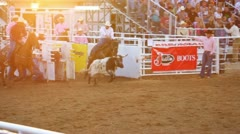 Cowboys Miss Steer at Rodeo Stock Footage
