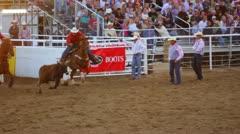 Cowboy Wrestles Steer at Rodeo - stock footage