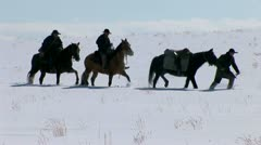 Winter horses struggling in the snow Stock Footage