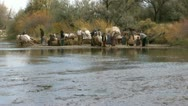 Pioneers crossing river in fall or autumn Stock Footage