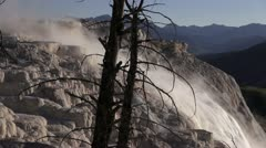 Mammoth Hot Springs Trees And Waterfall Stock Footage