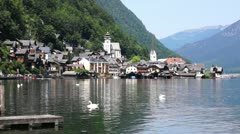 Swans on the Lake on the background of the Hallstatt town, Austria - stock footage