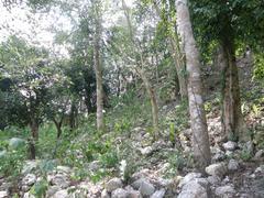 Ek Balam,Uncovered Mayan Ruins, Yucatan, Mexico Stock Photos
