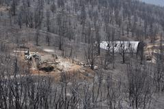 Home and business destroyed by wildfire 0939 - stock photo