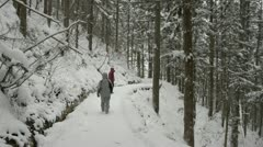 People braving the snowy forest path on the way to Jigokudani, Nagano, Japan. Stock Footage