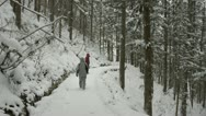 Stock Video Footage of People braving the snowy forest path on the way to Jigokudani, Nagano, Japan.