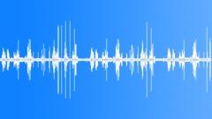 Birdsong Summer Morning 5 Sound Effect