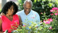 Diverse mature couple spend leisure time gardening   - stock footage