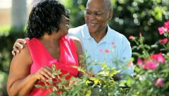 Senior ethnic loving couple enjoying growing flowers   Stock Footage