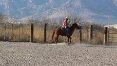 Cowboys on horseback lassoing a calf Stock Footage