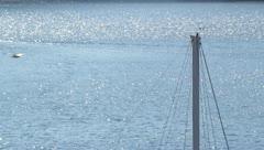 Veden kimallusta veneellä ja lintu lentää, purje, purjevene, lokki Arkistovideo