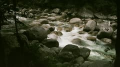Tropical rainforest river with rapids Stock Footage
