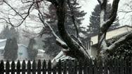 Snow, Blizzard, Precipitation, Winter Stock Footage