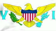 Stock Video Footage of Flag Of United States Virgin Islands