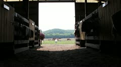 Cool perspective of stables with child on horse with mom leading Stock Footage