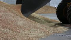 Wheat in the Silo Stock Footage