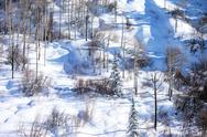 Stock Photo of Snowy mountain side with trees winter