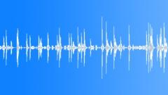 Door Creaks and Bangs in Draft Sound Effect