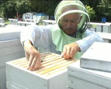Beekeeper gets into the hive Stock Footage
