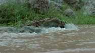 Stock Video Footage of Super Slow Motion Water flowing past camera around rocks in a stream