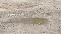girl puddle 1 - stock footage