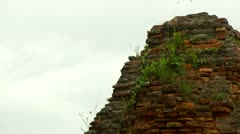 Stock Video Footage of Grass grows from roof of Thap Poshanu Cham Tower Ancient temple