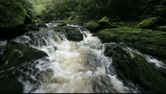 Tranquil flowing river water Stock Footage