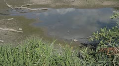 Stock Footage - Drought - Pond drying up - Cracked Soil Stock Footage