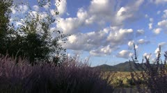 Taos Morning Stock Footage
