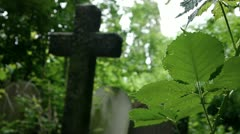Overgrown Forgotten Cemetery - Crucifix, bramble and flies Stock Footage